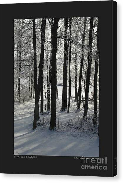 Snow Trees And Sunlight-ii Canvas Print