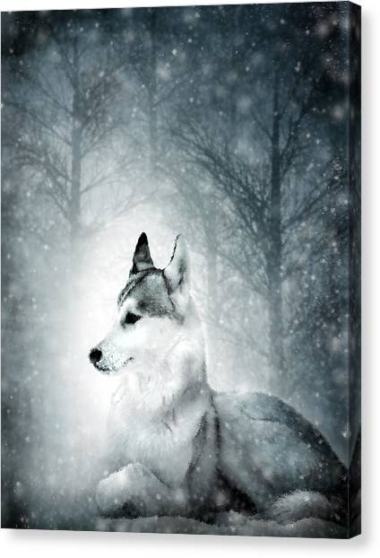 Woodland Canvas Print - Snow Wolf by Svetlana Sewell