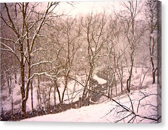 Southwest Canvas Print - Snowy Country Day by Betsy Knapp