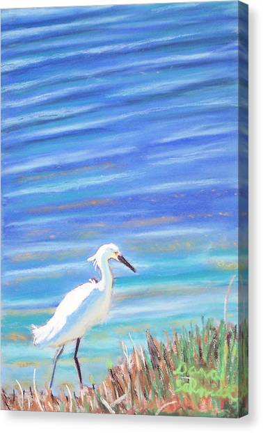 Snowy Egret At Sanibel Island Canvas Print