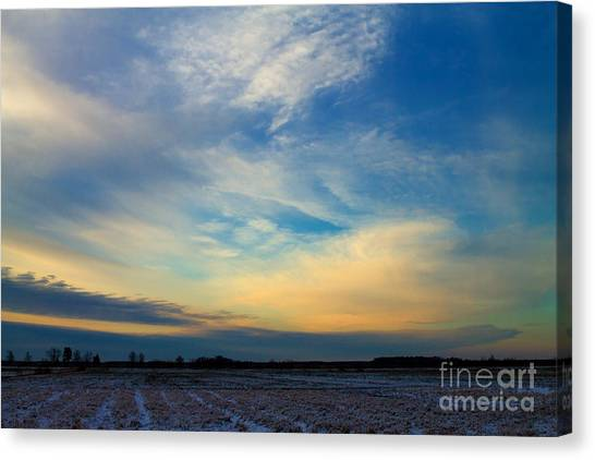 Snowy Field Sunset Canvas Print by Ursula Lawrence