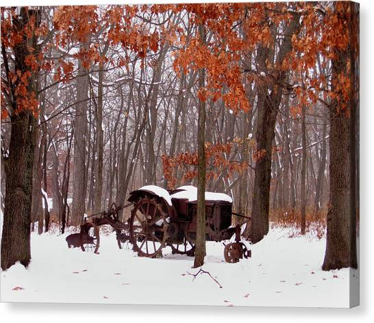 Snowy Implement Canvas Print by Ed Golden