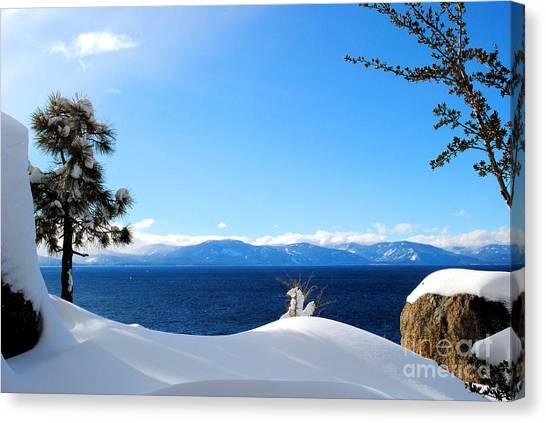 Snowy Tahoe Canvas Print by Sean McGuire