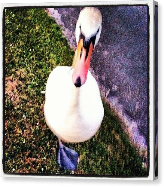 Hops Canvas Print - #so? Yes I Only Have #onefoot #oneleg by Kevin Zoller