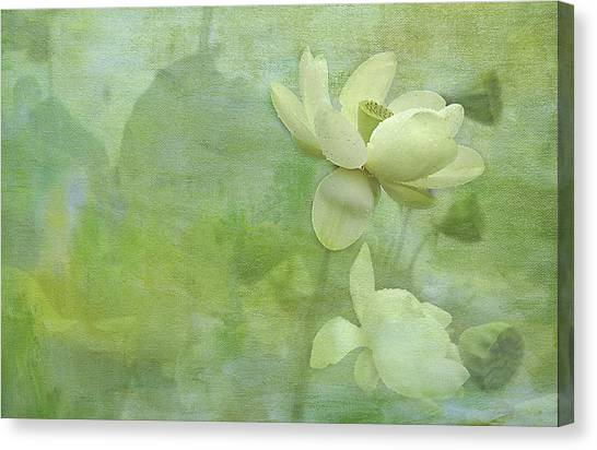 Soft Lillies Canvas Print