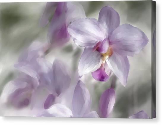 Soft Pink Canvas Print