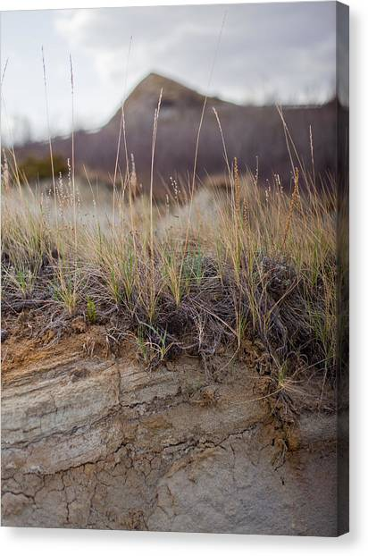 Solitude Beyond The Hill Canvas Print by Jesse Pickett