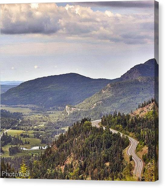 Wolves Canvas Print - Southwest Side Of Wolf Creek Pass In by Wolf Stumpf
