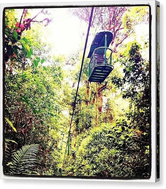 Jungles Canvas Print - Space Trucking - Costa Rica by M Menagu