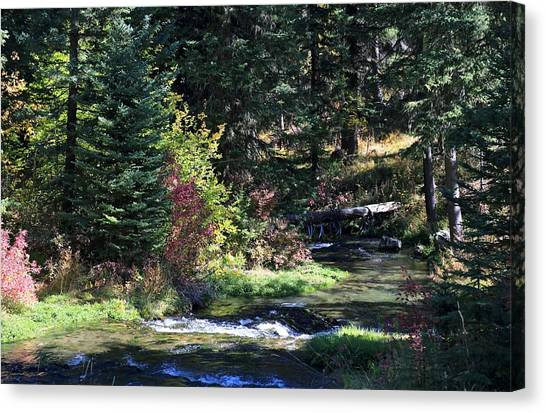 Spearfish Canyon Canvas Print