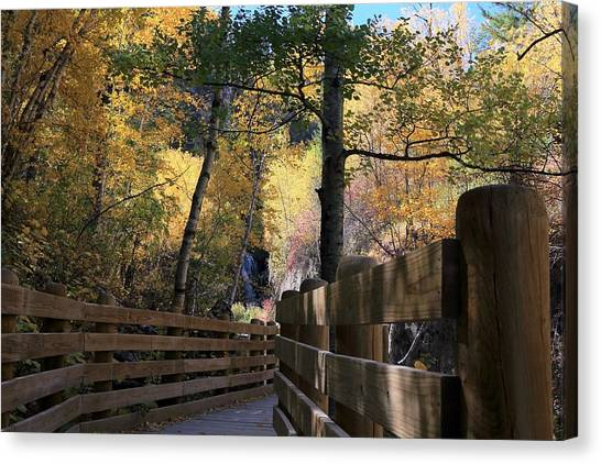 Spearfish Canyon Walkway Canvas Print