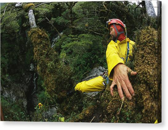 Spelunking Canvas Print - Spelunkers Rappel Down Through Dense by Carsten Peter