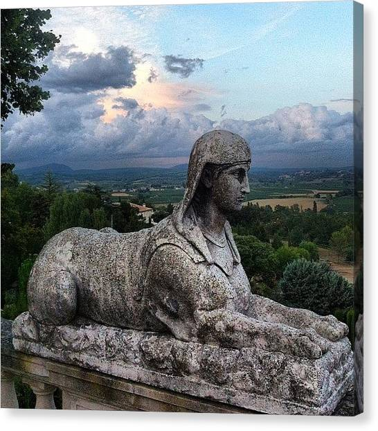 Vineyard Canvas Print - Sphinx by Chloe Stickland