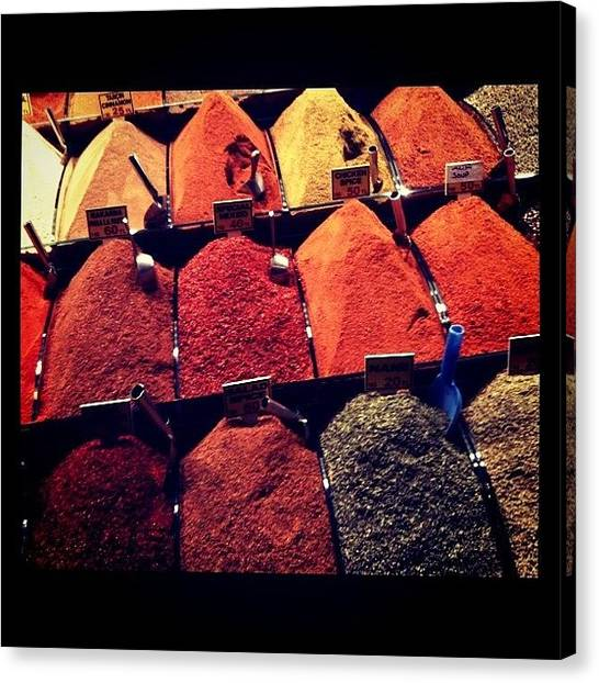 Pepper Canvas Print - Spices by Isabel Poulin