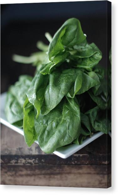 Spinach Canvas Print - Spinach by Shawna Lemay