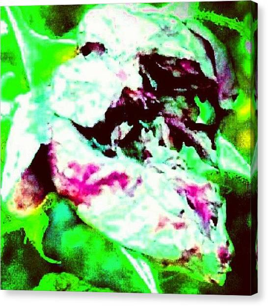 Droid Canvas Print - Spirit Of The Rose (face In Lower by Marianne Dow