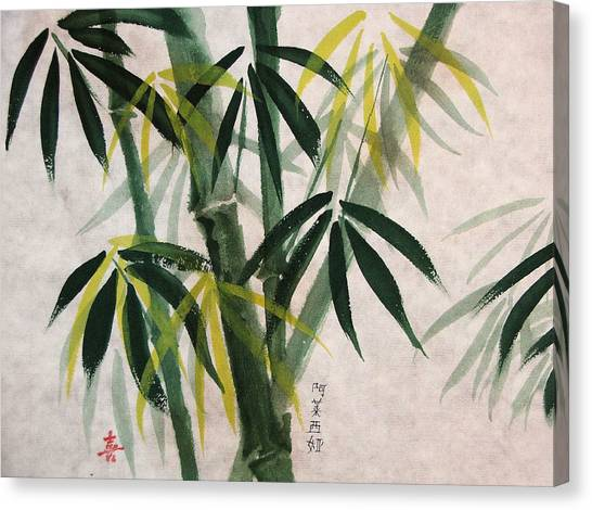 Splendid Bamboo Canvas Print