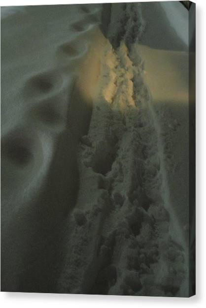 Spotlight On Snow Steps Canvas Print by Guy Ricketts