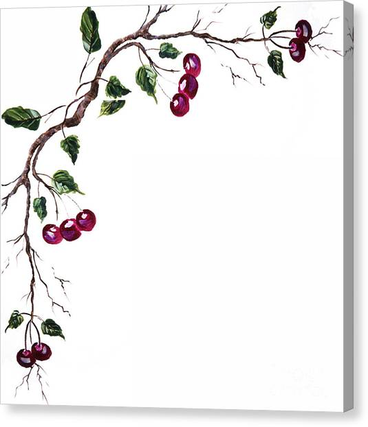 Spray Of Cherries Canvas Print