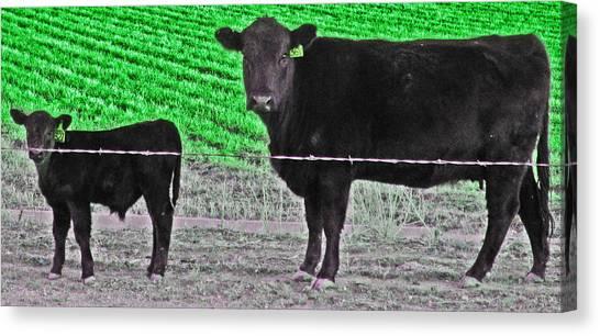 Spring Birth Canvas Print