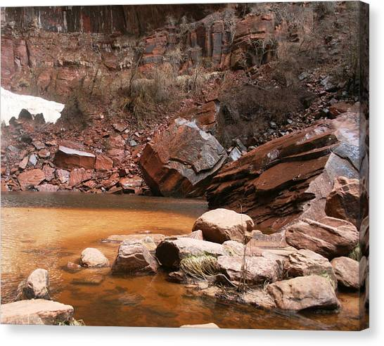 Spring In Zion Park  Canvas Print
