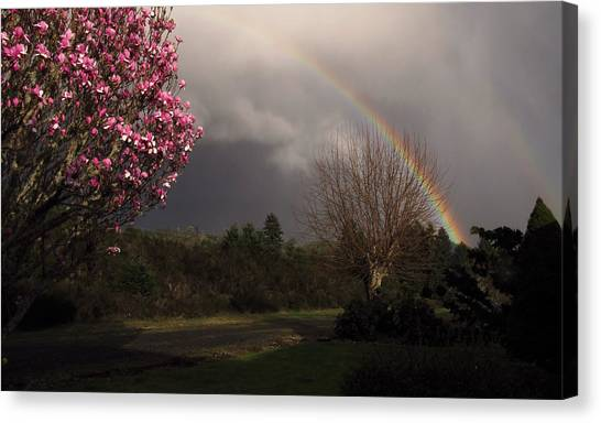 Spring Rainbow Canvas Print