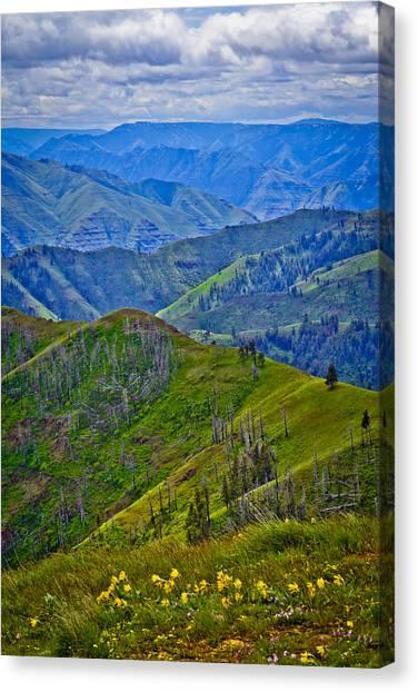 Springtime In Eastern Oregon Canvas Print by Jen TenBarge