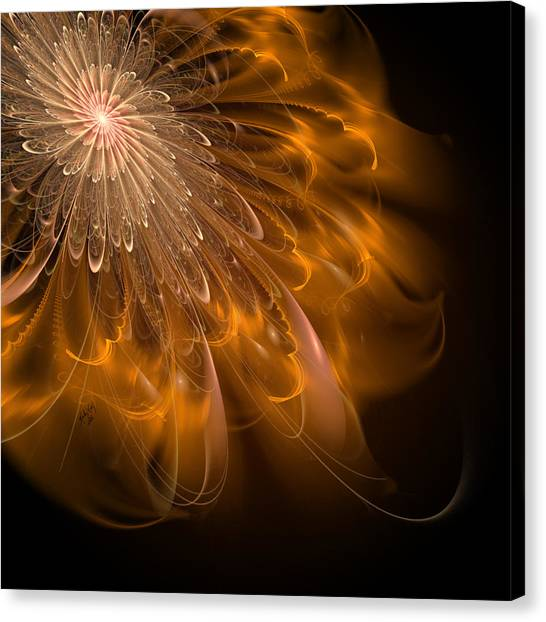 Spun Gold And Lace Canvas Print