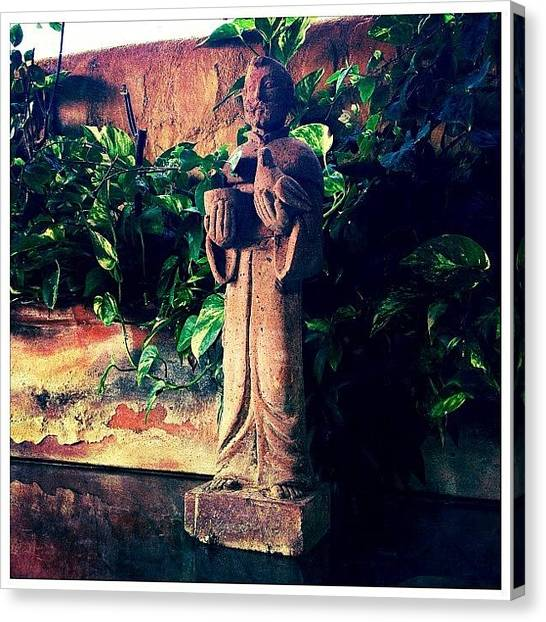 Mexican Canvas Print - St. Francis Of Assisi Statue by Natasha Marco