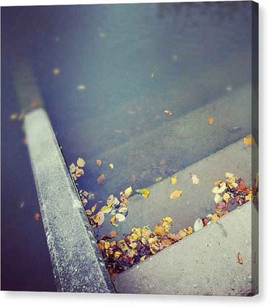 Wet Canvas Print - Stairs With Autumn Foliage Leading Into Water by Matthias Hauser
