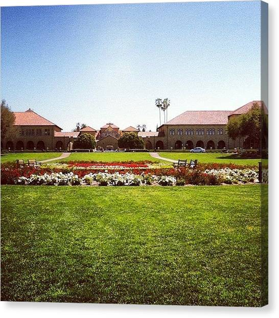 Stanford University Canvas Print - Stanford University #stanford #iphone by Lisa Thomas