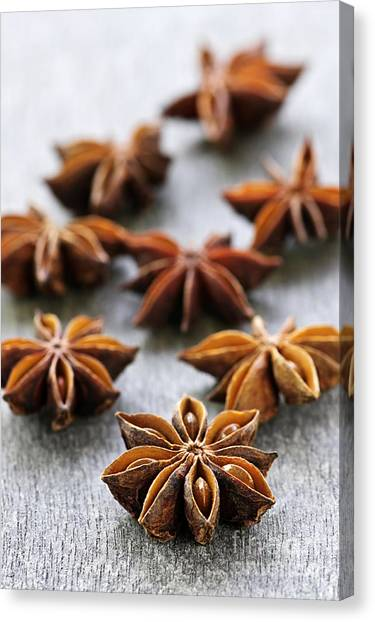 Dried Fruit Canvas Print - Star Anise Fruit And Seeds by Elena Elisseeva