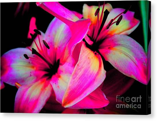 Stargazer Abstract Canvas Print