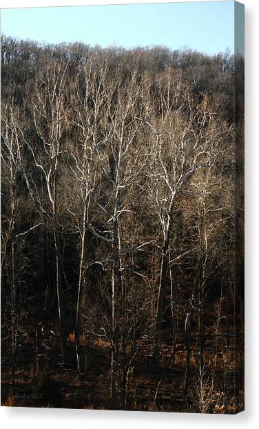 Stark Naked Canvas Print by Leroy McLaughlin