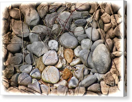 Canvas Print - Sticks And Stones Can Hurt by Cathy Beharriell