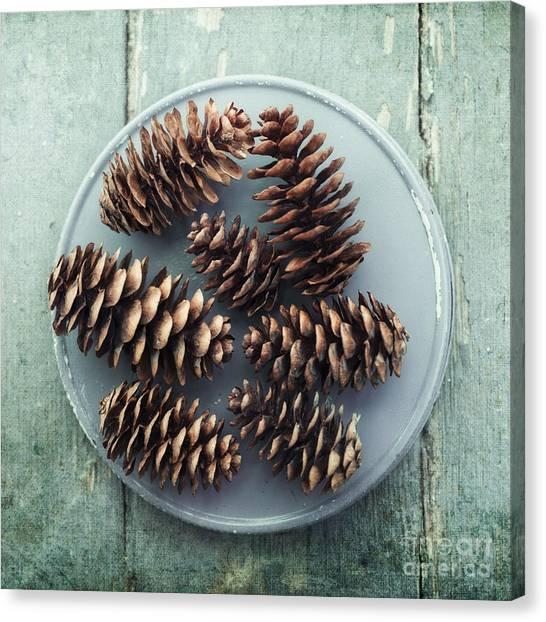 Nature Still Life Canvas Print - Stil Life With  Seven Pine Cones by Priska Wettstein