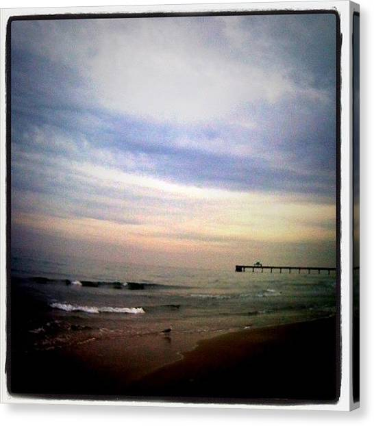 Seagulls Canvas Print - Still One Or Two Photos Left To Put Up by Emily W