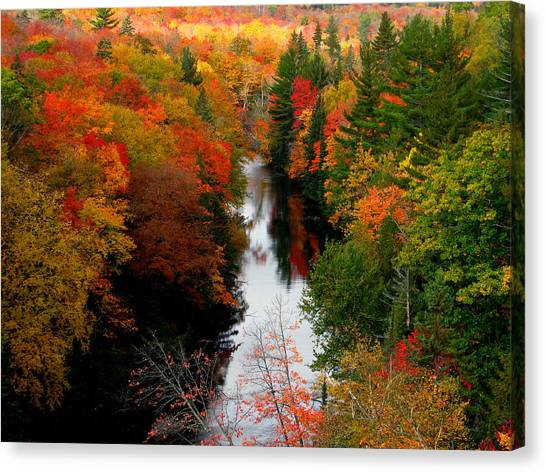 Stolen Fall Canvas Print