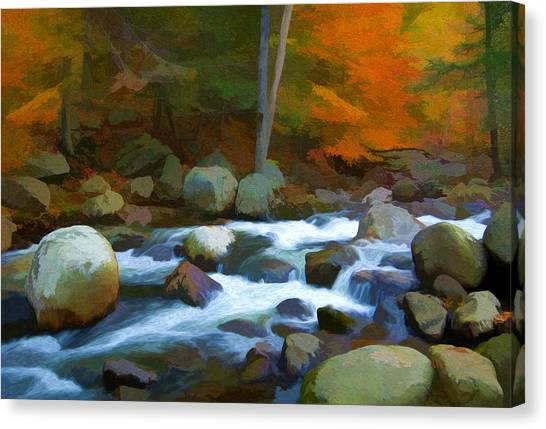 Stony Brook Stream Canvas Print