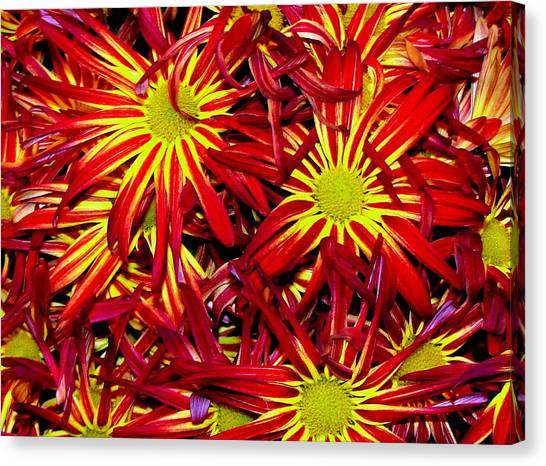 Store-bought Beauty Canvas Print