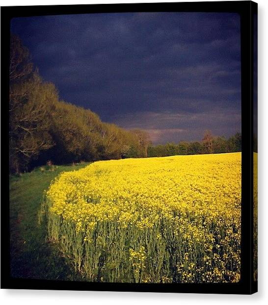 Farmers Canvas Print - Storm Coming by Dave Harris