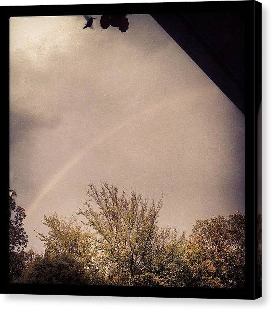 Hummingbirds Canvas Print - Stormy Rainbow by Brooke Good