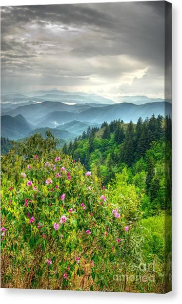 Stormy Spring Skies Canvas Print
