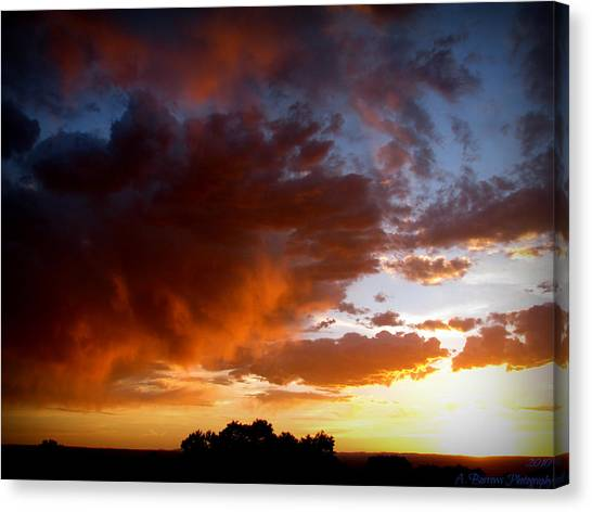 Stormy Sunset Over A Tree Canopy Canvas Print by Aaron Burrows