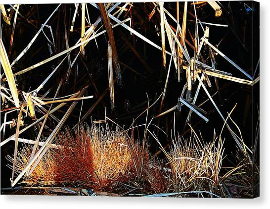 Straw Canvas Print by Susana Sanchez Giraud