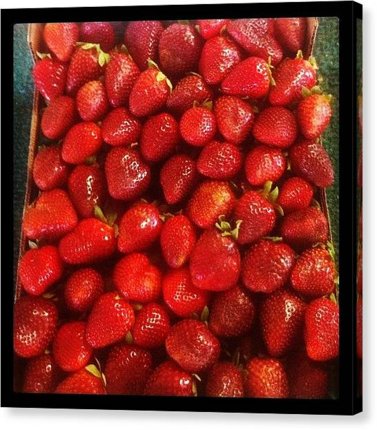 Berries Canvas Print - Strawberries From Florida by James Roberts