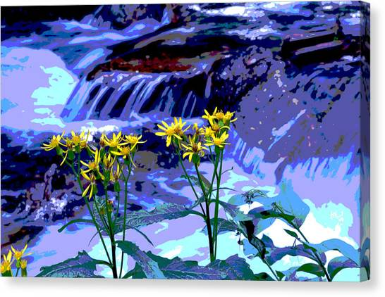 Stream And Flowers Canvas Print