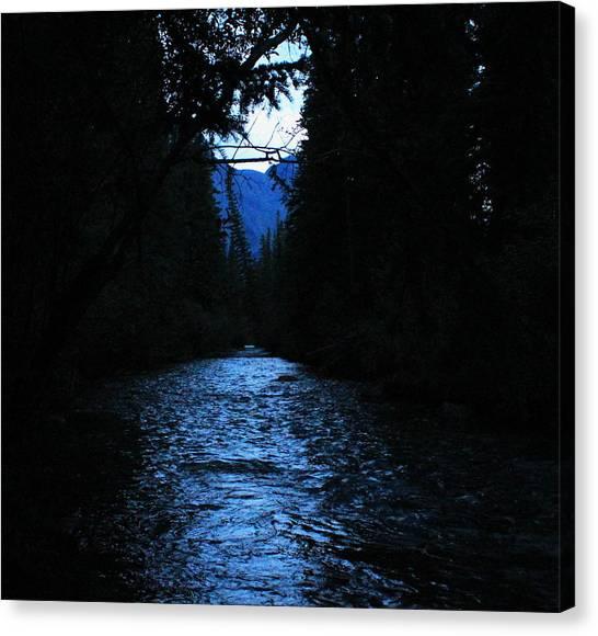 Stream In The Deep Dark Forest Canvas Print by Donna Barker