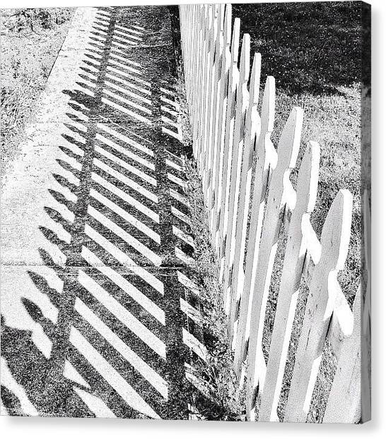 Foxes Canvas Print - #street #shadow #fence by Rachel Fox Burson