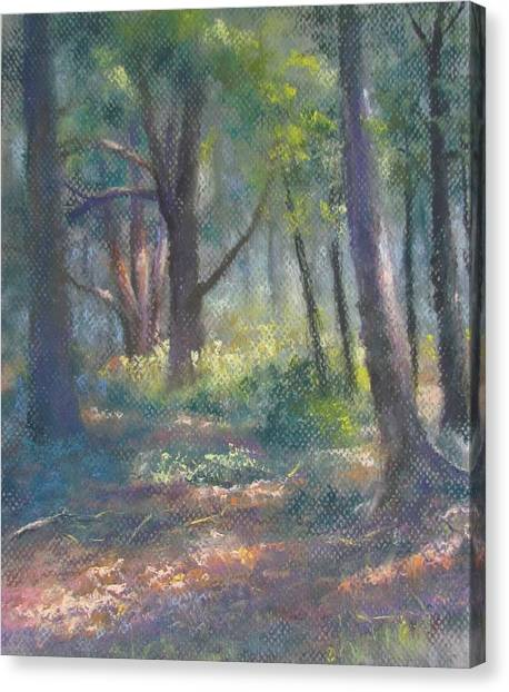 Study For Woodland Interior Canvas Print